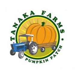 Pumpkin_Logo.JPG