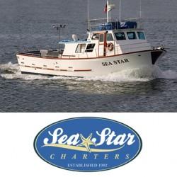 sea-star-boat