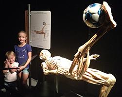 body-exhibit