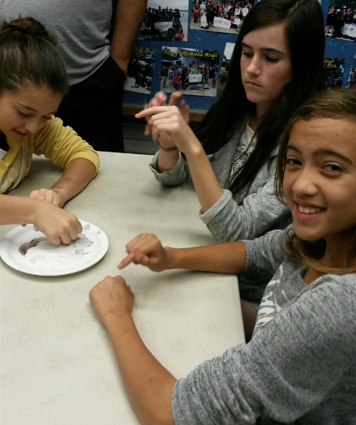 Montessori Middle School Students Participate In Sea Camp