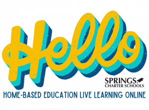 Home-based Education Live Lessons Online